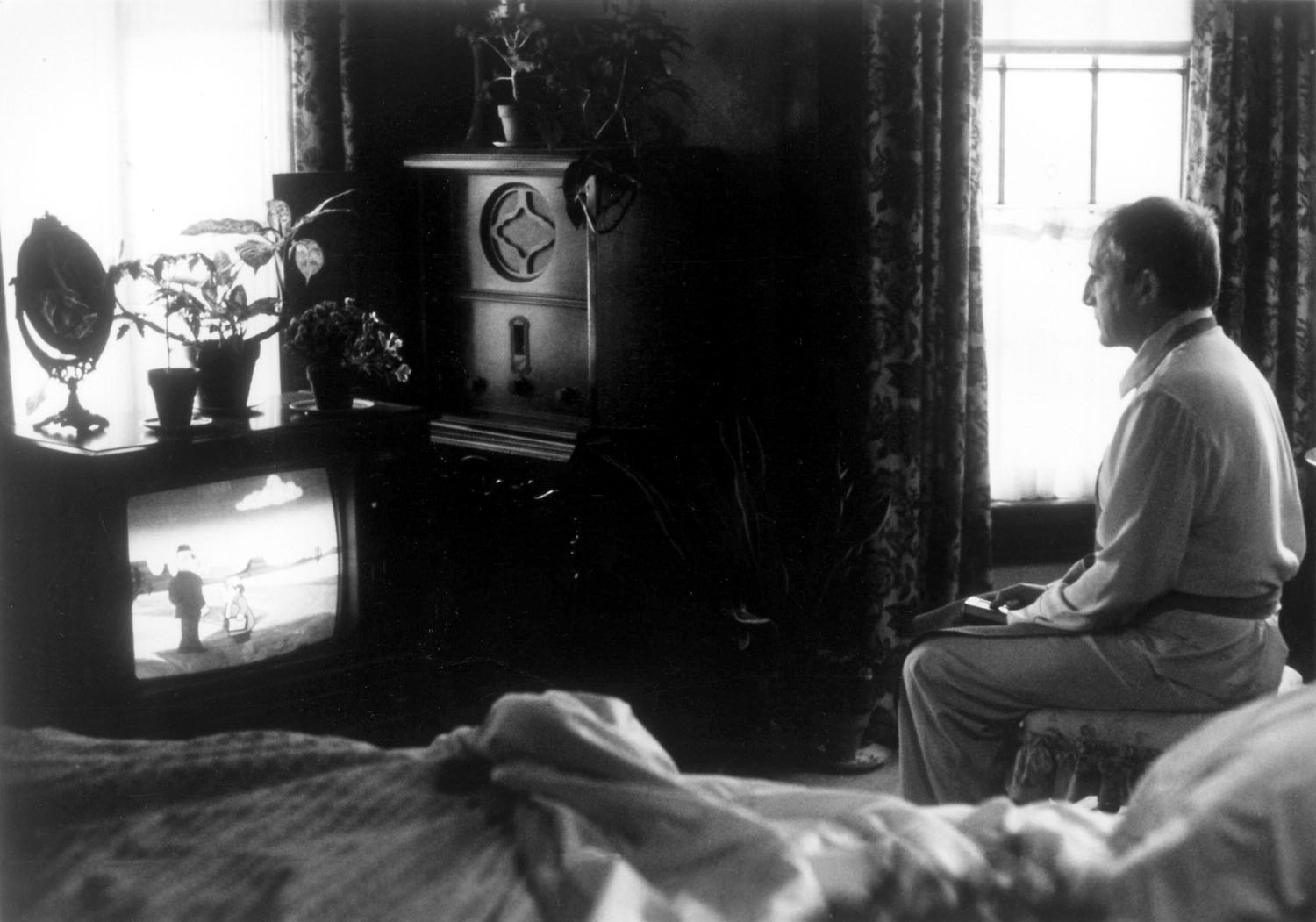 Being There: Watching TV