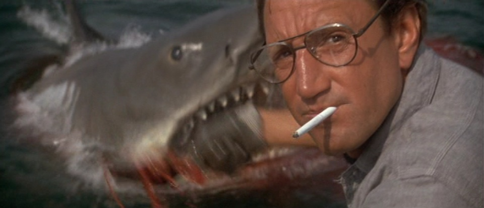 Why don't you shovel this shit? Scene from JAWS