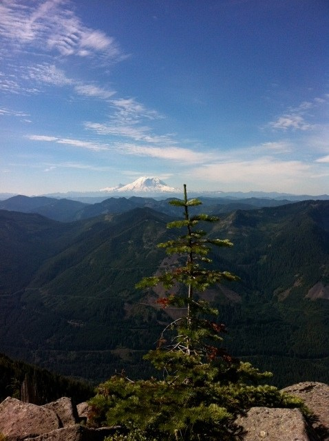 A view of Mt. Rainier from Bandera Mountain: August 2011