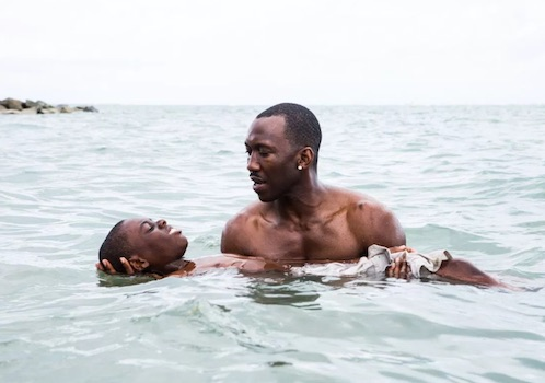 Moonlight wins best picture at the 2016 Academy Awards