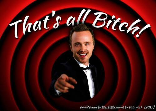 That's All, Bitch: Jesse Pinkman and the Breaking Bad finale